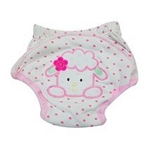 Sassy Pants Cloth Diaper